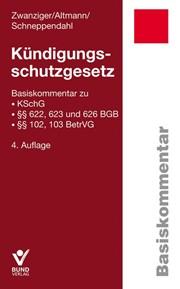 schneppendahl_kuendigungsschutz.jpg